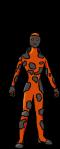 Species_Trans-Poria